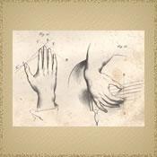 Ergonomic Hand Position